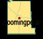 bloomingpedia-logo-20060724.png